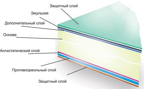 возле живых химический слой на фотопленке глоксиния есения покоряет