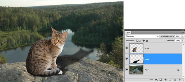 Как сделать в фотошопе падающую тень. Новый способ создать реалистичную тень с помощью Photoshop