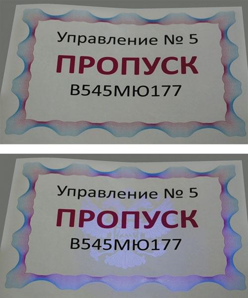 Пропуск с защитными элементами, отпечатанный на принтере OKI Pro9541